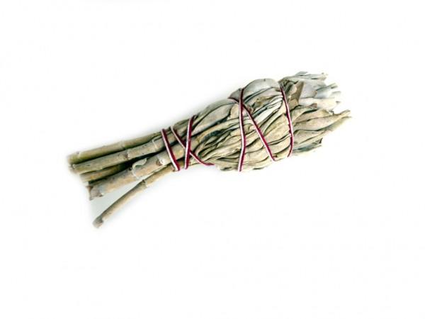 natürlicher weißer Salbei Gr. S, 15 -20 g - Smudge Stick - white Sage -