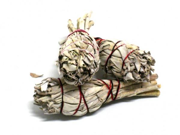 natürlicher weißer Salbei 3x Gr. S, 15 -20 g,Smudge Stick - white Sage -
