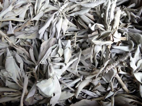 hochwertiger weißer Salbei lose